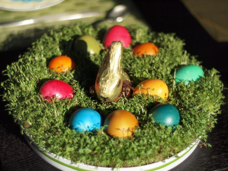 Les 19 mois de Ticoeur au rythme des cloches de Pâques