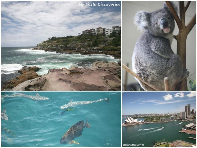 Interview voyage #5 : l'Australie