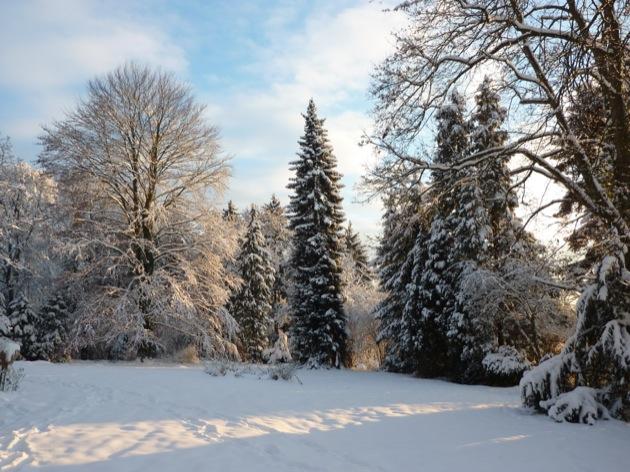 Mes voyages couleur neige