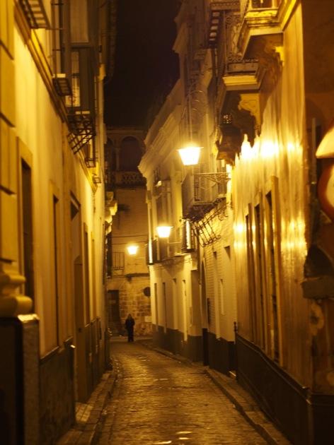 santa_cruz_nuit