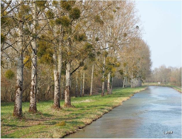 bord_canal