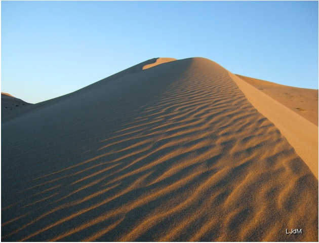 desert_chinois