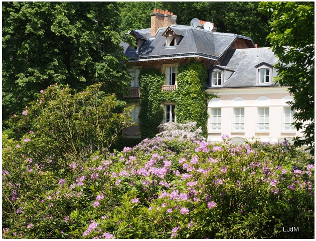 fleurs_chateaubriand