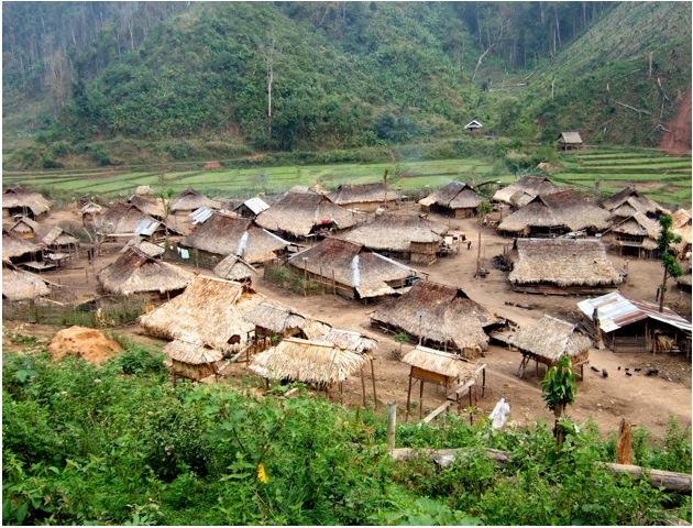 village_vue