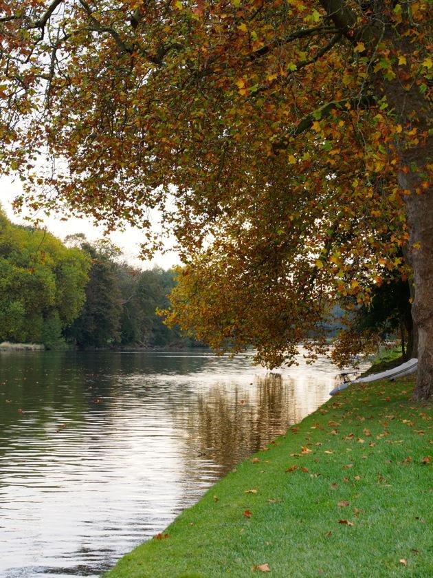 Instant T#111 : couleurs d'automne à Chantilly