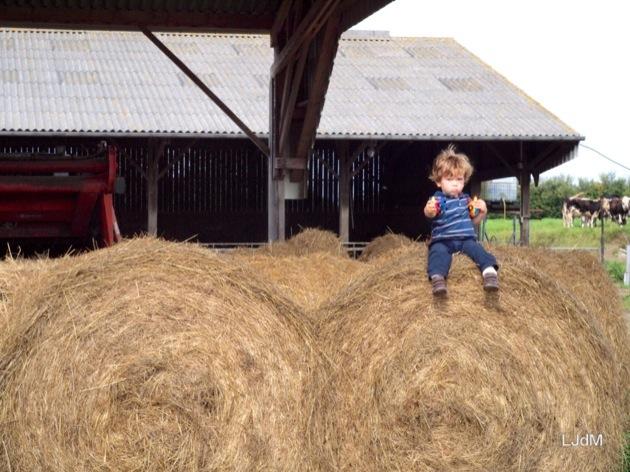 Bienvenue à la ferme ! (cadeau inside)