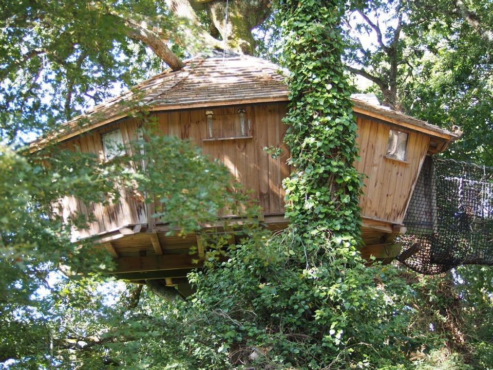 cabane dans les arbres famille nombreuse