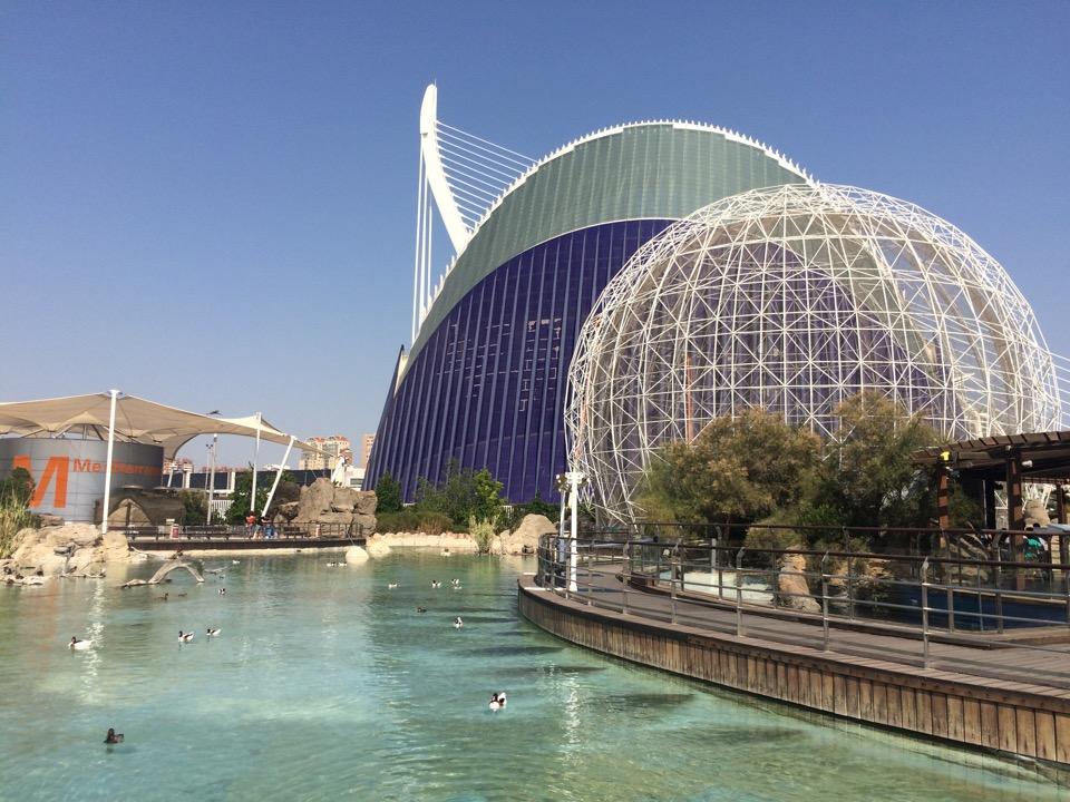aquarium Valencia