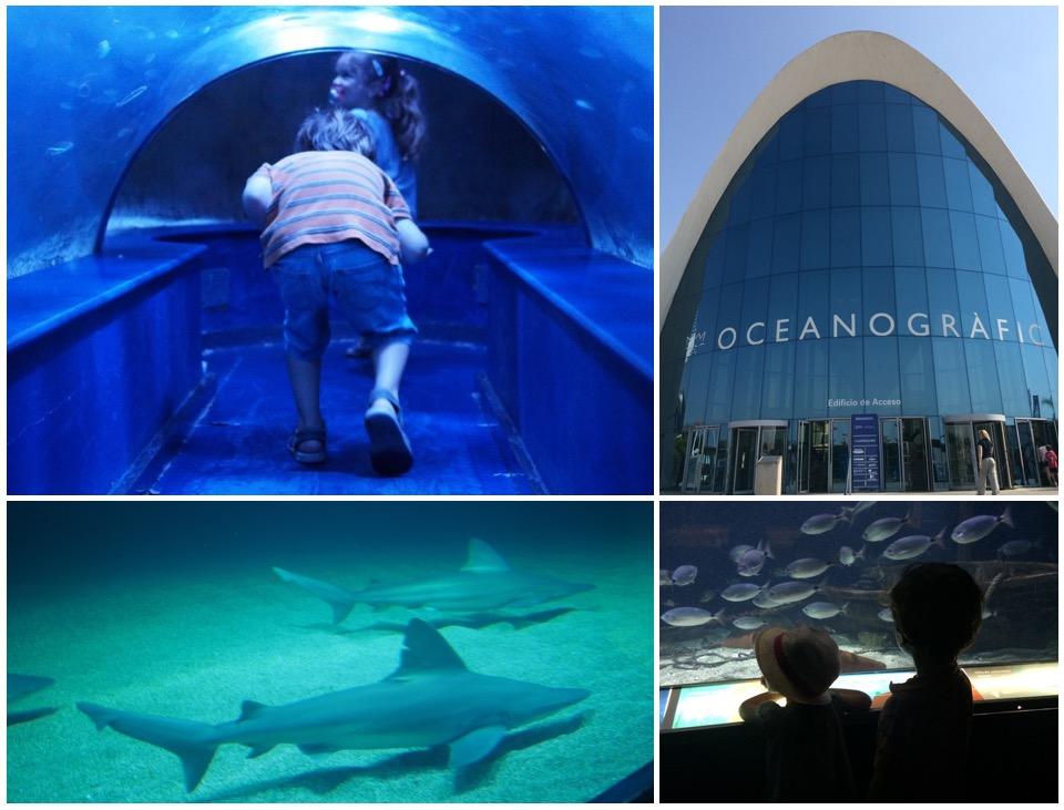 Oceanographic en famille