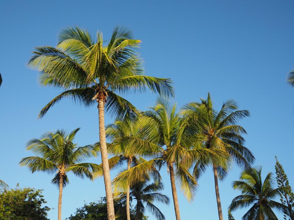 voyage en Guadeloupe