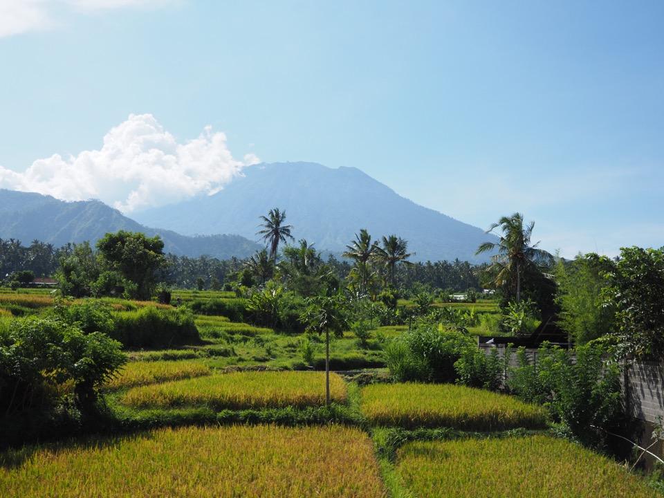 louer une voiture à Bali