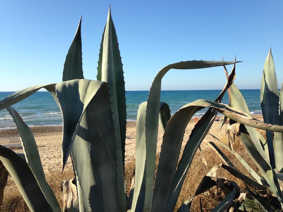 plage castellammare del golfo