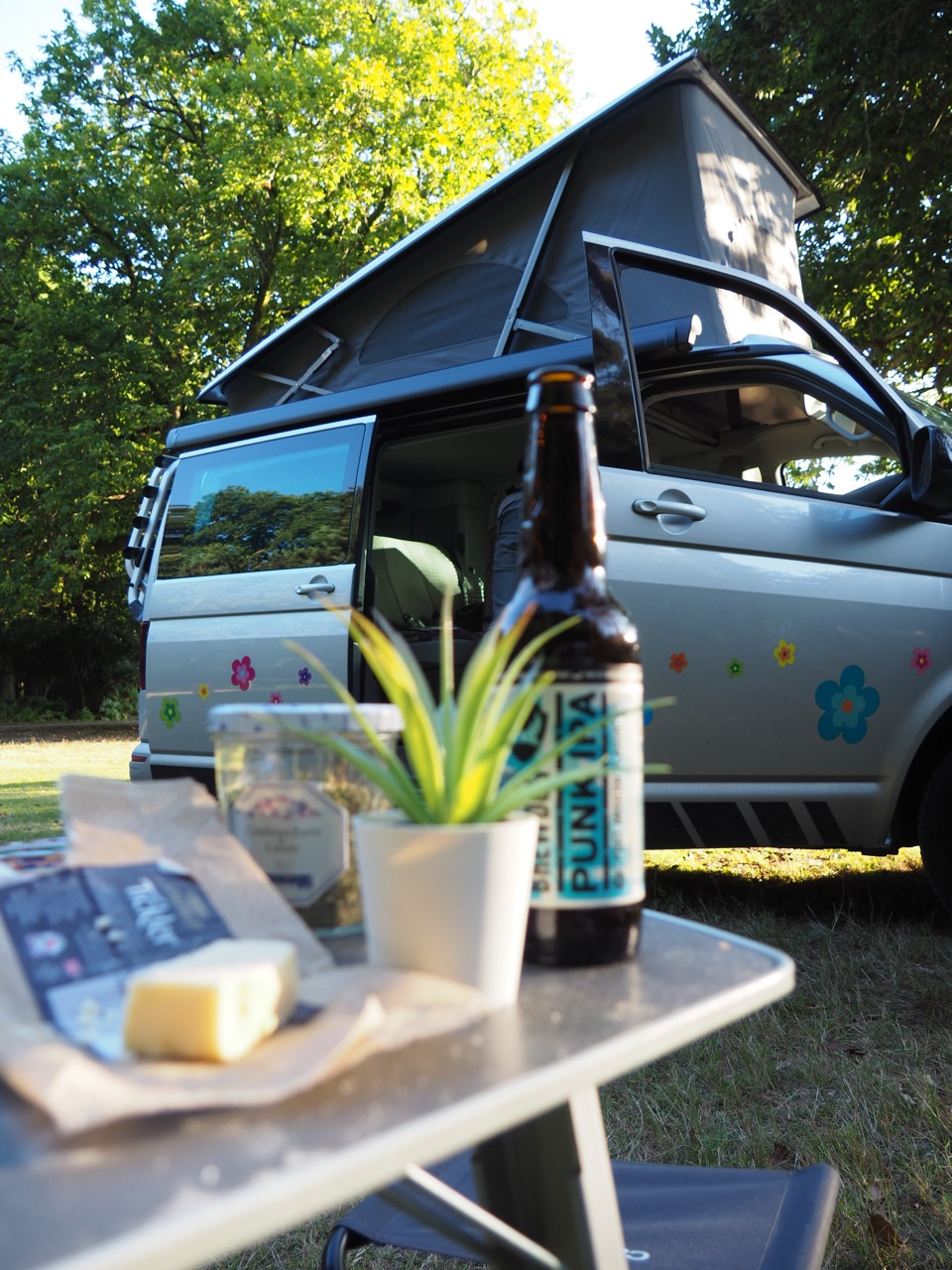 camping New Forest