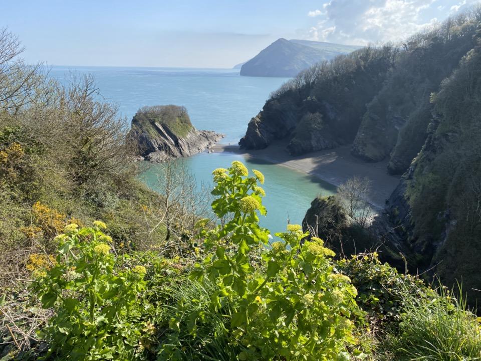côte du Devon
